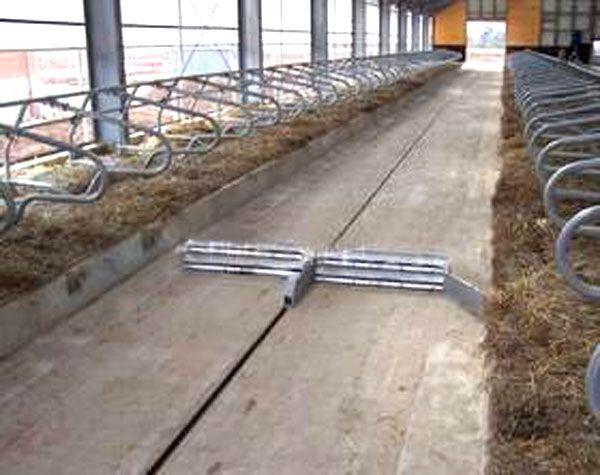 牛舍地面排粪排尿设计